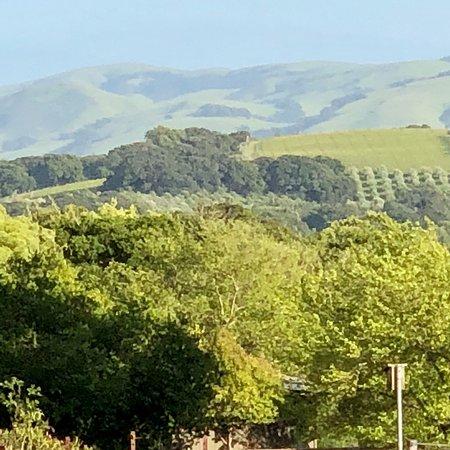Antica Napa Valley