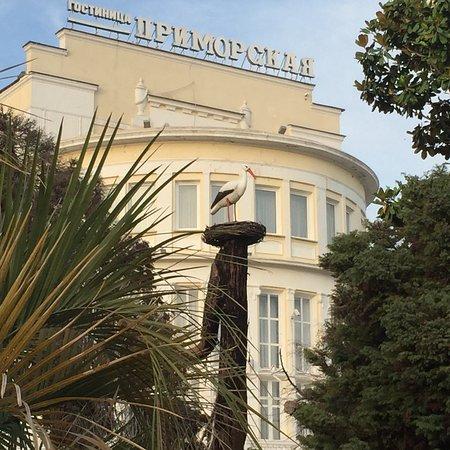 Primorskiy Park Photo