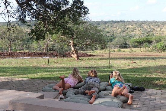 Zebra Hills Safari Lodge: Watching the water hole