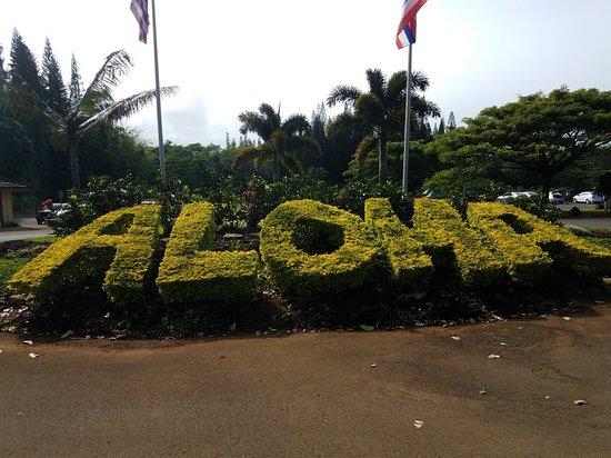 Kilauea, HI: 20171209_132037_large.jpg