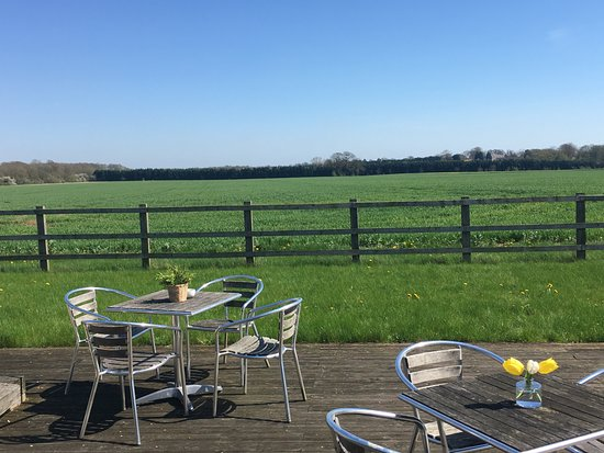 The Old Piggery Guest House & Yurts: Sun soaked deck with views to inspire