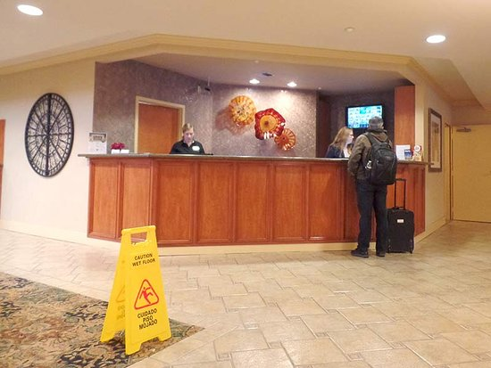 Mediterranean Inn: The check-in counter. Their service was fast but their behavior unprofessional.