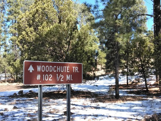 Woodchute Wilderness Area: Sign on top of Mingus Mountain