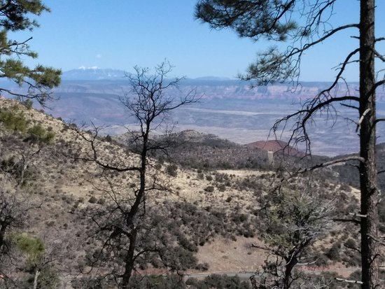 Woodchute Wilderness Area: Vista of Sycamore Canyon and Secret Wilderness Areas