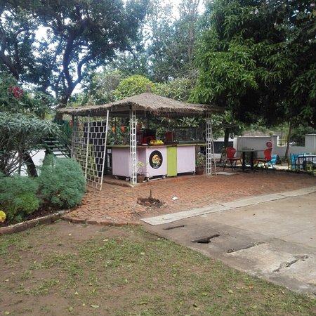 Casa Latina Photo