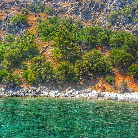 写真Marmaris Zeus Boat枚