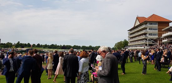 York Racecourse: Great Day Out