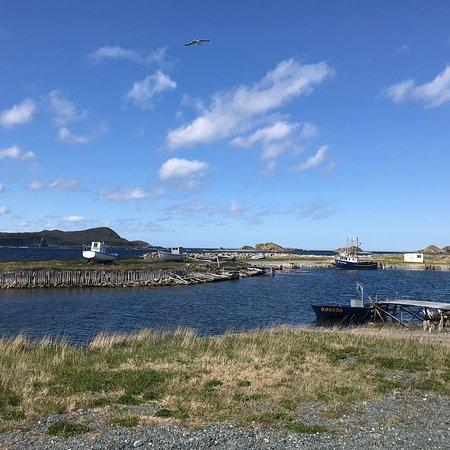 Ferryland, Canada: photo0.jpg