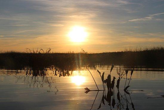 Safari Delta: atardecer en el río