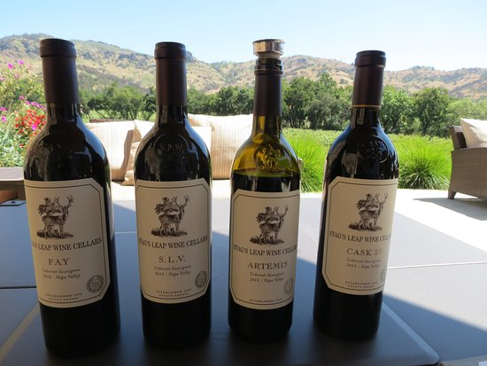 Stag's Leap Wine Cellars: Stag's Leap Wine Cellar's - Tasting on the Patio