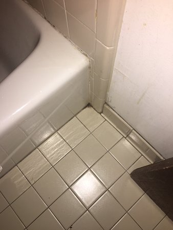 Golden Link Motel: Mold around Bathtub (couldn't drop in video)
