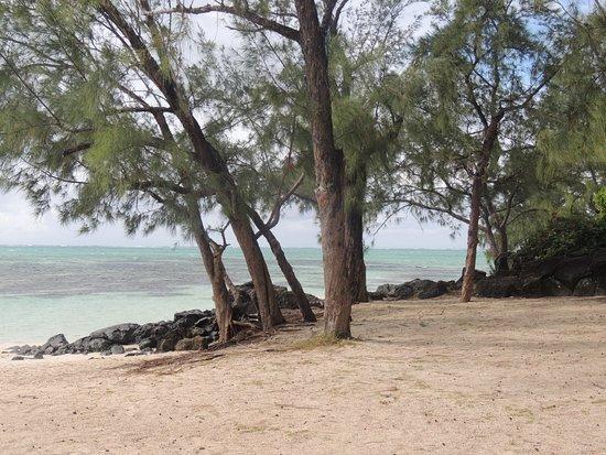plage de l'ile aux cerfs