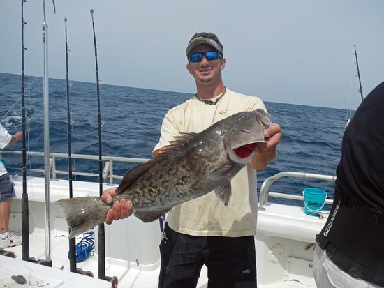Reel Eazy Charters: We often catch some nice grouper when fishing deep