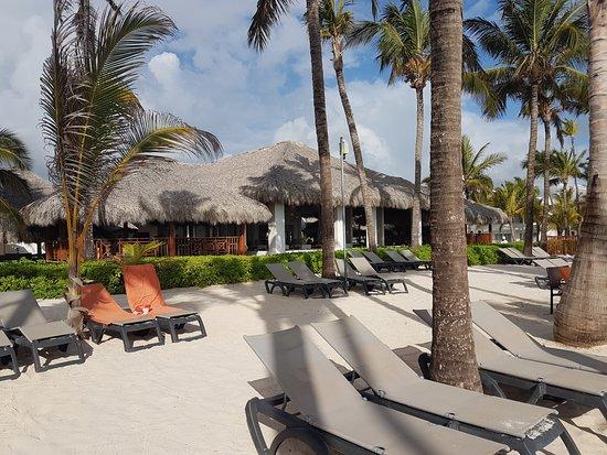 Occidental Punta Cana: Ocean no palapas