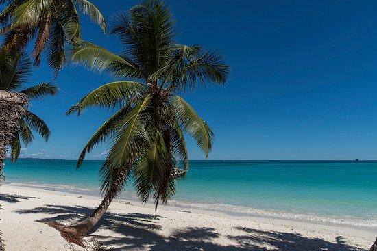 Zebubianco Tour: Di nuovo sulla spiaggia, dopo aver pranzato... una meraviglia!