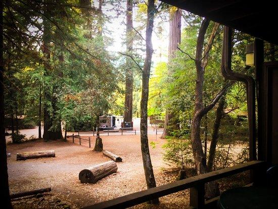 Redwoods River Resort & Campground : Mini-Suite room 6