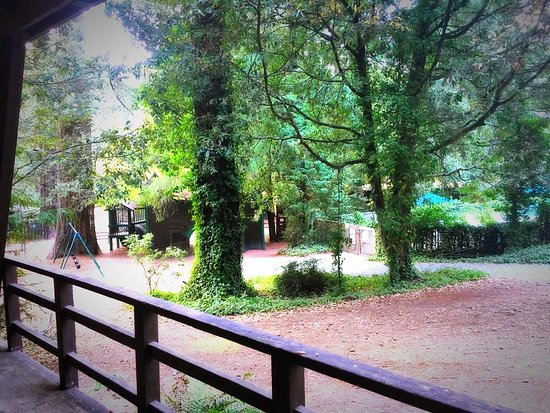Redwoods River Resort & Campground : Mini-Suite room 7