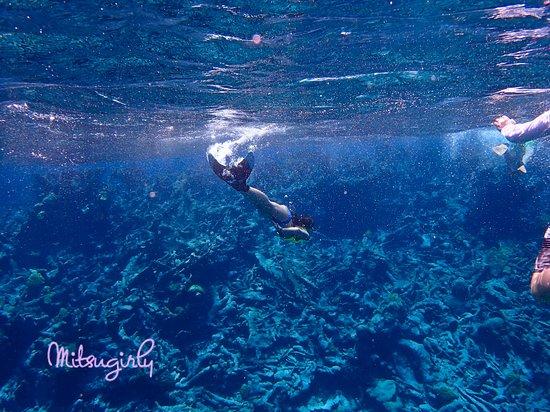 Buck Island Reef National Monument照片