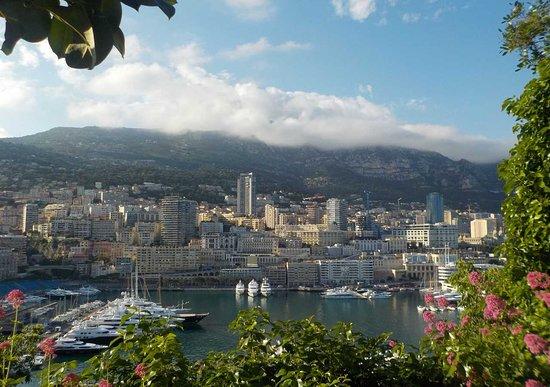 Vieux Monaco: porto nuovo
