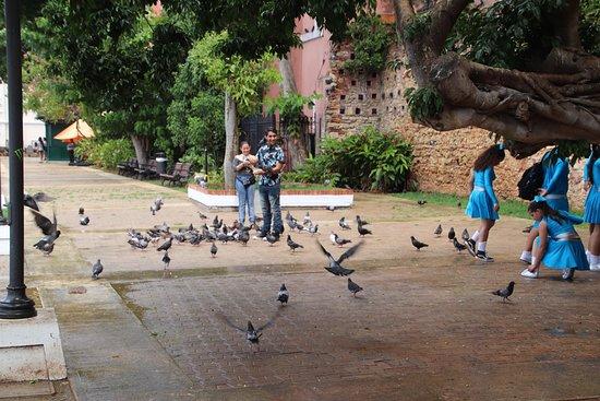 旧圣胡安美食之旅的风味照片