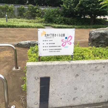 Kitamoto 1 Chome Sakura Park