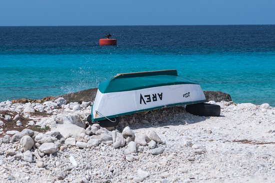 Bonaire Photo Shoot : Beautiful blue water