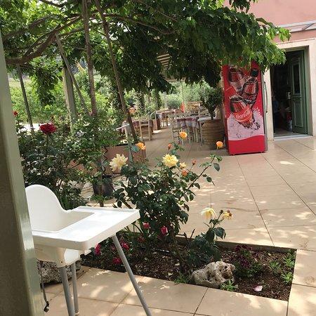 Alexandros Restaurant : Il locale immerso tra le piante fiorite