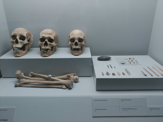 Museo Archeologico, Cartagena, Murcia, Spain-bild