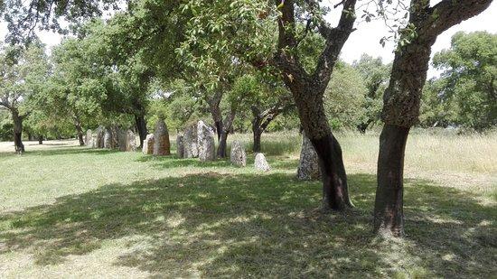Parco Archeologico di Pranu Muttedu: Primo filare di menhir