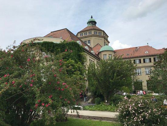 Ботанический садМюнхен-Нимфенбург