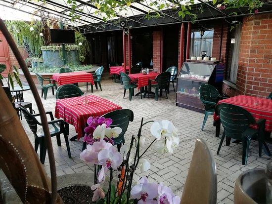 Hotel Ciudad Vieja: Área de jardín