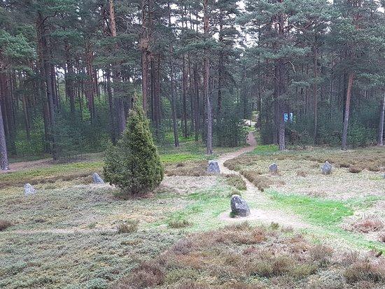 Stone Circles in Odry: Kręgi c.d.
