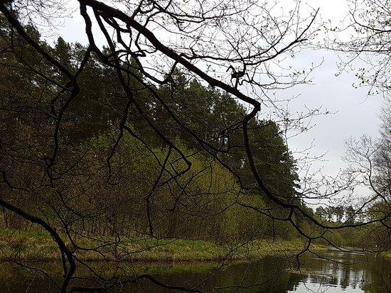Czersk, Poland: Wda