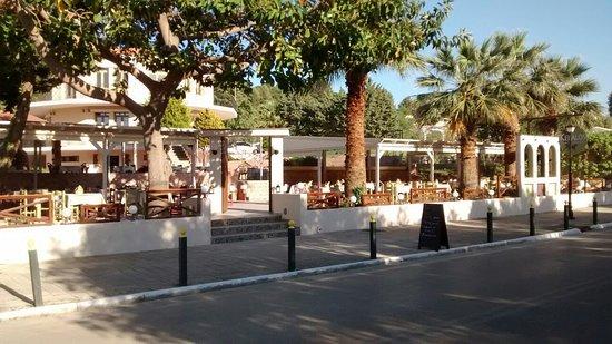 Kefalos Greek Cuisine & Bar: Great food friendly atmosphere