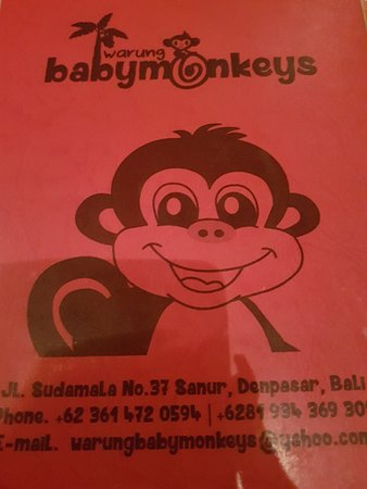Warung Baby Monkeys: Okay
