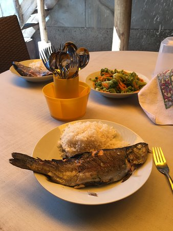 Thani Ayahuasca Retreat Center: Delicious trout rubbed with salt, garlic and huacatay