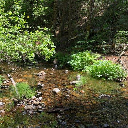Foto de Arnold Rim Trail