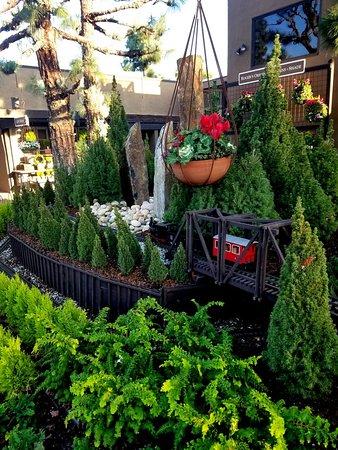 Roger's Gardens Photo