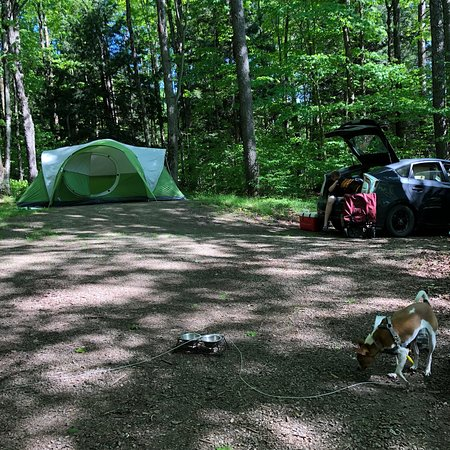 Tent site and trail review