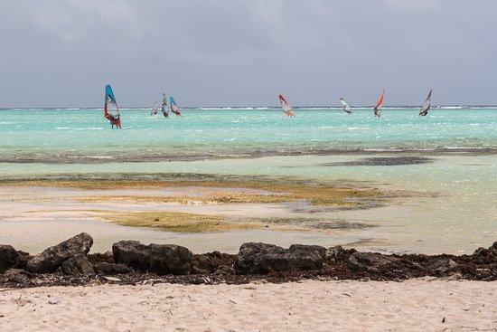 Bonaire Windsurf Place: Widsurfing on Lac Bay