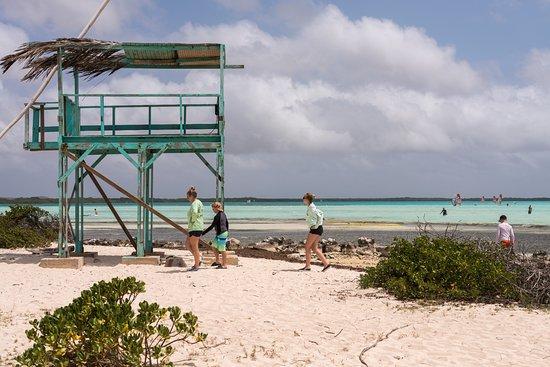 Bonaire Windsurf Place: Observation platform overlooking Lac Bay