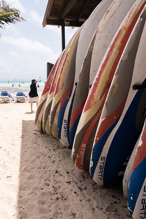Bonaire Windsurf Place: Boards ready to rent