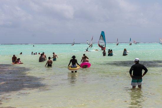 Bonaire Windsurf Place: Dozens of wind surfers off shore