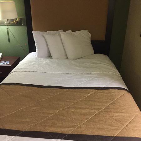 Extended Stay America - Austin - Southwest : Double Double room. First room was very dirty. Second room better but still wasn't cleaned prope