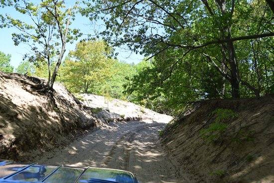 Saugatuck Dune Rides: driving through the 525 acres