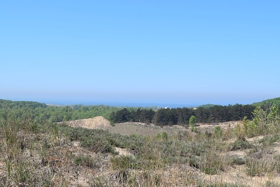 Saugatuck Dune Rides: Lake Michigan off in the distance