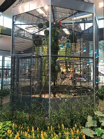 Carrefour Laval : Bird Display