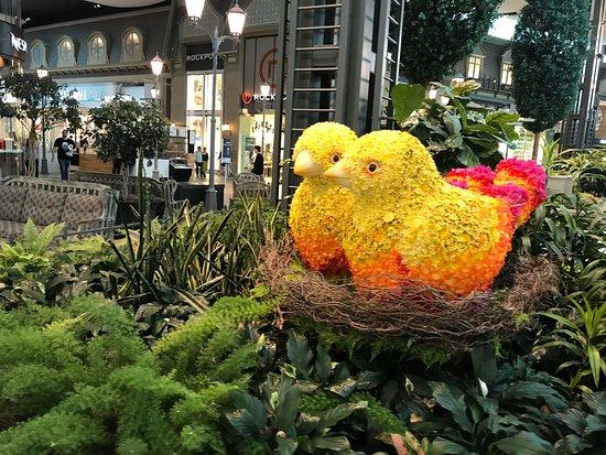 Carrefour Laval : Indoor Garden