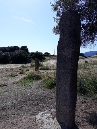 Sollacaro, France: 20180526_163323_large.jpg