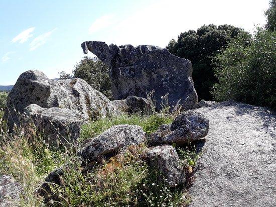 Sollacaro, France: 20180526_164629_large.jpg